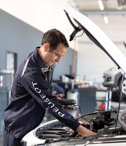 Assistenza Peugeot Napoli
